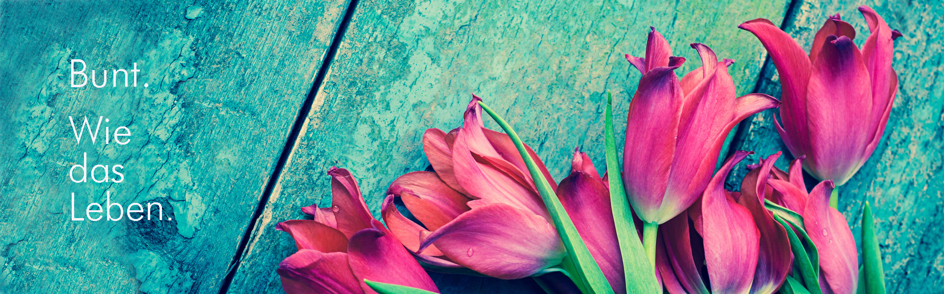 Carpe Diem Floristik in Wuppertal Elberfeld - Blumen für